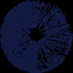 microdosing institute logo