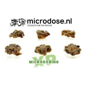 Microdosing XP Truffles