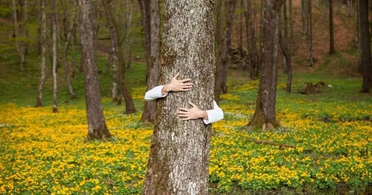 person hugging tree