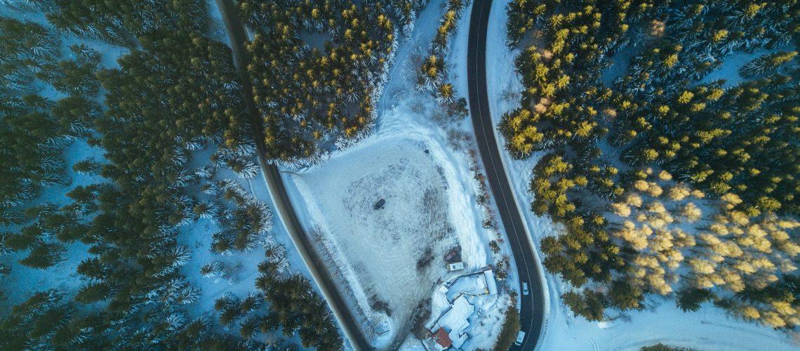 shortcut forest road